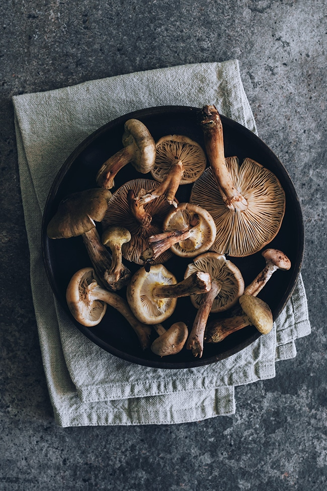 Honey mushroom armillaria #wildmushrooms #soup #vegan | TheAwesomeGreen.com